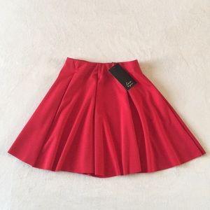 Zara Skater Mini Skirt